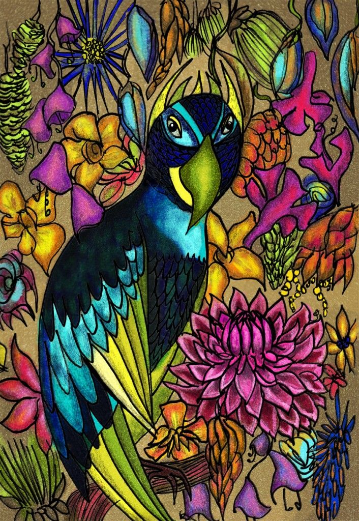 Parrot ink and photoshop illustration