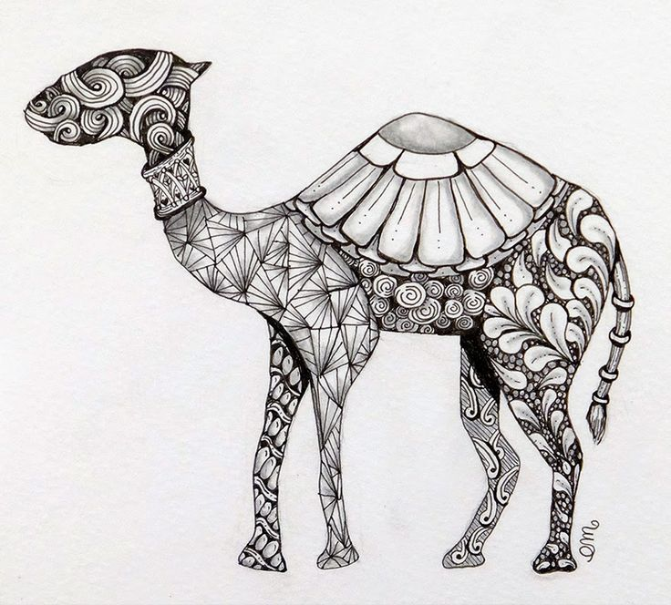 Zentangle Camel - Zentangle Kameel