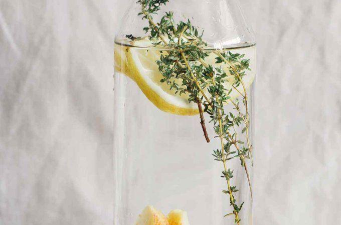 24 Hour Ginger Detox Cleanse Meal Plan + The Best Ginger Tea Recipe Ever – Ginger detox