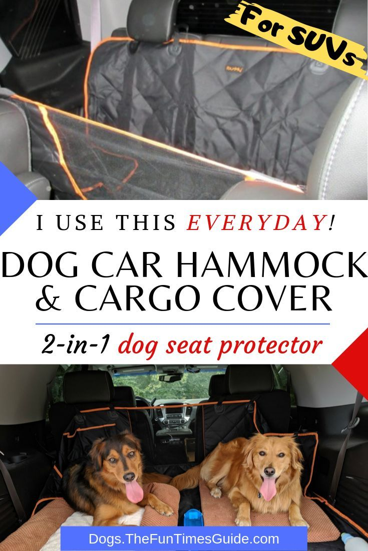 Need A Dog Car Seat Protector I Have 3 Dogs Here S My Review Of