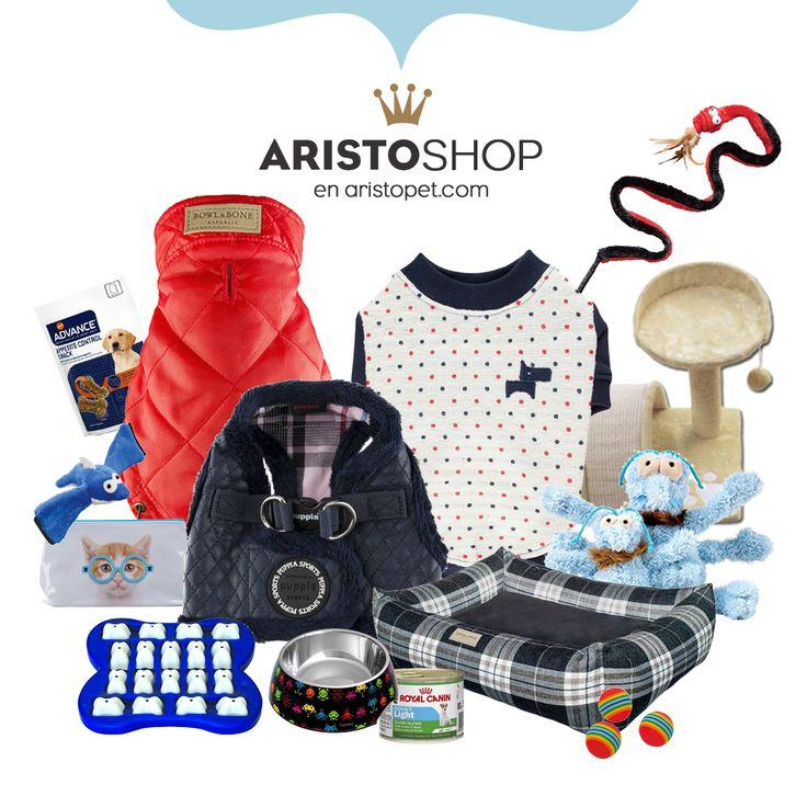 Accesorios molones para tu ARISTOPERRO 🐕 , ARISTOGATO 🐈 ¡y para ti también! visita ARISTOPET.COM/ARISTOSHOP y encuentra jerseys, abrigos, juguetes, rascadores, snacks, camas y mil cosas más, ¡Todas chulísimas! Te esperamos 😉