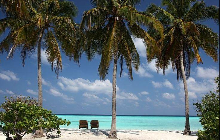Maldivlerde gizlilik istediğinizde seçebileceğiniz en iyi tercihlerden birisi Six Senses Laamu Daha fazlası için uzmanlarımız sizden haber bekliyor.  Hadi hemen iletişime geçelim...