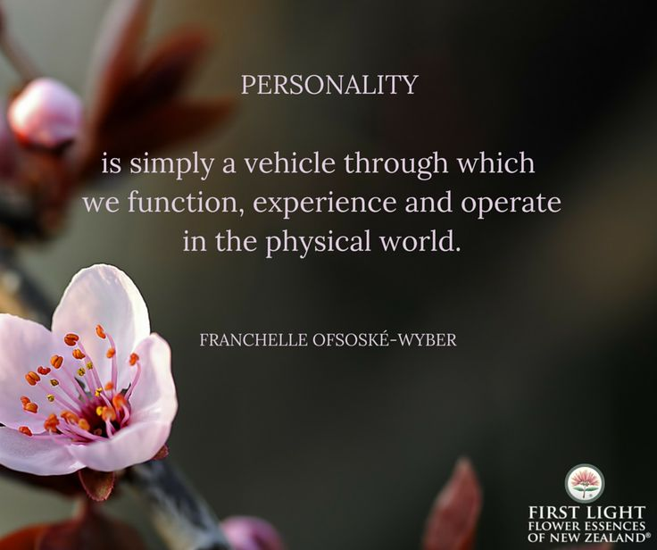 Personality is simply a vehicle through which we function, experience and operate in the physical world.