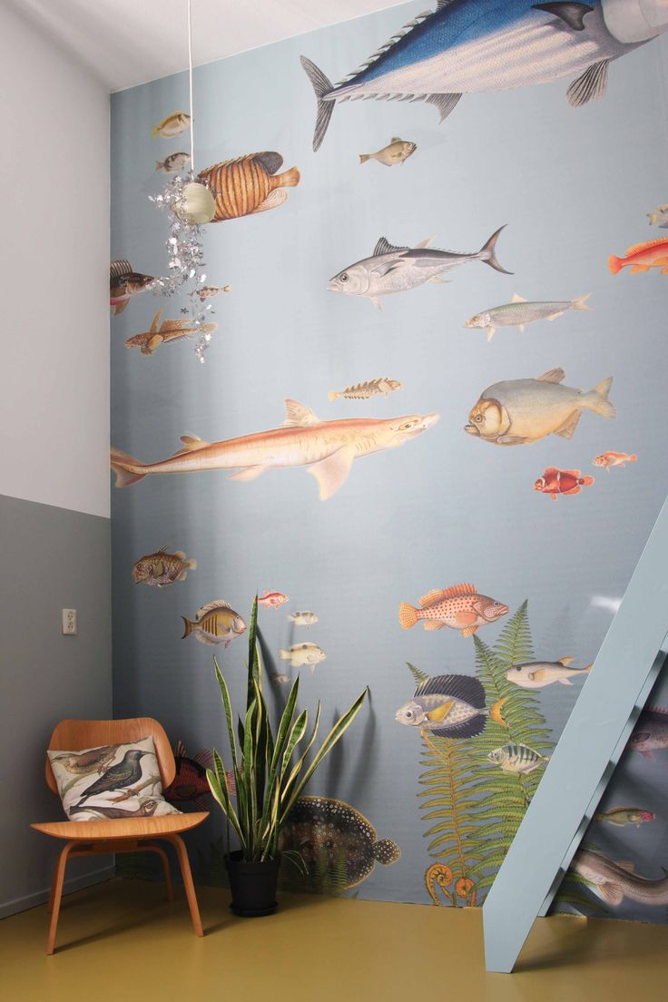 behang 'vissen' in woonhuis
