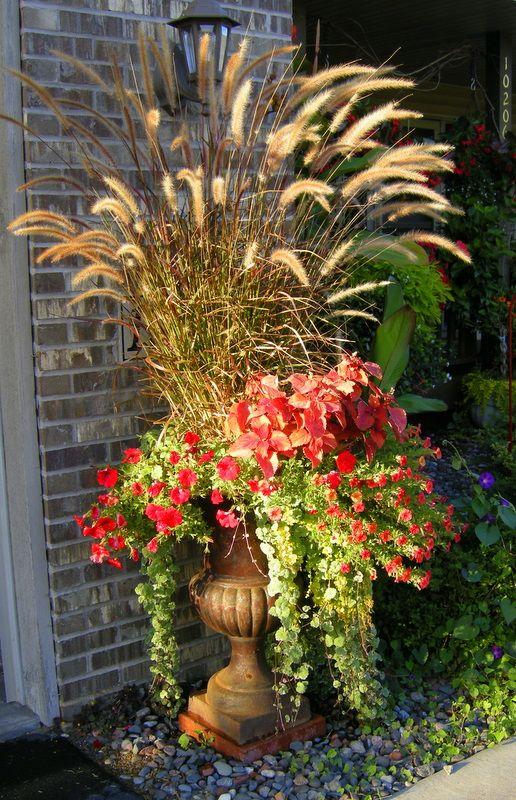 best 20 front door planters ideas on pinterest front door landscaping front door plants and. Black Bedroom Furniture Sets. Home Design Ideas
