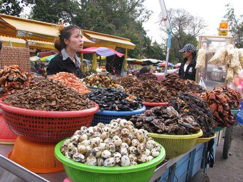 Du lịch Campuchia không thể bỏ qua chợ Côn Trùng với những món ăn thú vị.