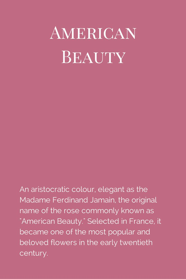 "An aristocratic colour, elegant as the Madame Ferdinand Jamain, the original name of the rose commonly known as ""American Beauty."" Selected in France, it became one of the most popular and beloved flowers in the early twentieth century.  www.fleurpaint.com #wallpaint"