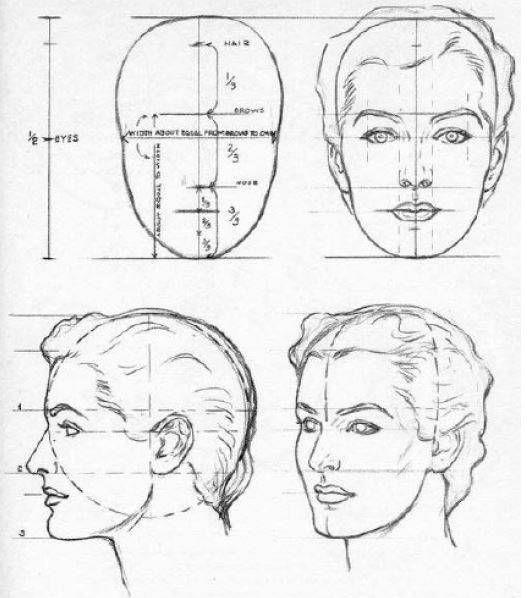 dibujar-las-proporciones-del-rostro-de-una-mujer