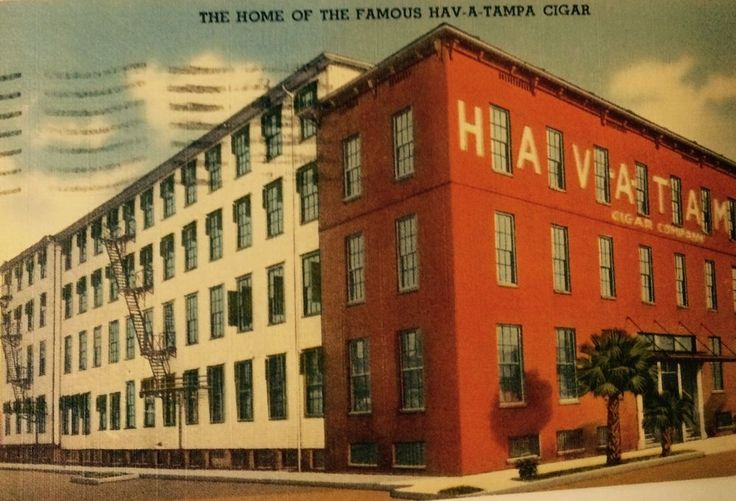 Full Color1955 PoHome Of The Famous Hav-A-Tampa Cigar Full Color Postcard Used  | eBay