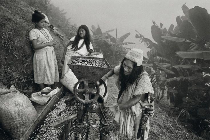 De las zonas volcánicas de El Salvador a las húmedas colinas de Indonesia. De las plantaciones de India a los frutos de Etiopía. Viaje de autor en busca de los secretos de uno de los granos más excitantes del planeta.
