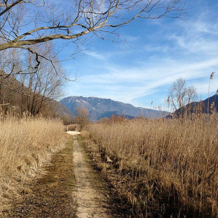 #nordicwalking #tour con #NordicWalkingLidodiVenezia #Camminata #nordica ad anello tra i sentieri e le sponde dei laghi con una splendida vista sulle #colline #trevigiane e le #prealpi #venete attraverso i borghi di Lago, Sottocroda, Soller, Fratta, Colmaggiore tra i profumi e i colori di ieri e di oggi #revinelago #treviso #venezia #veneto https://www.facebook.com/events/430042357144258/