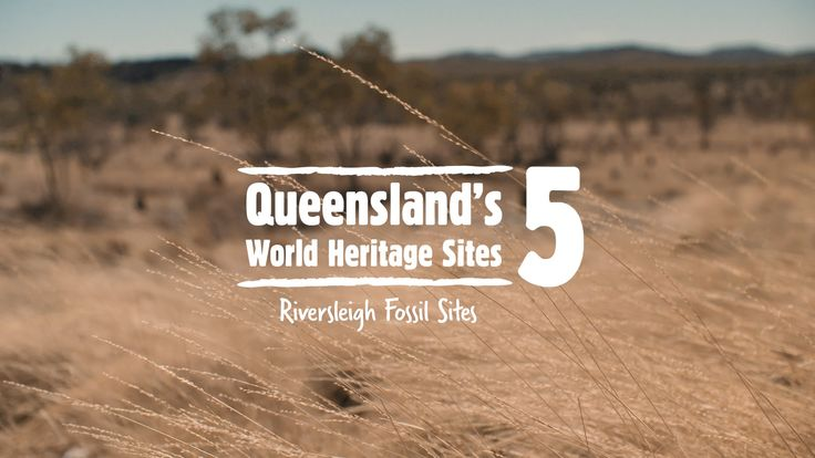 Once upon a time, the Riversleigh area of Outback Queensland was a rich rainforest area. Approximately 25 million years the land was in transition from rainf...