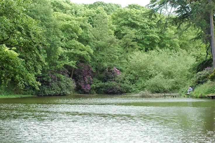 Arrowe Park