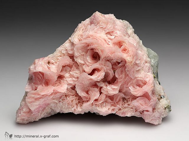 Rhodochrosite / Huachocolpa Mine, Peru...the prettiest I have seen