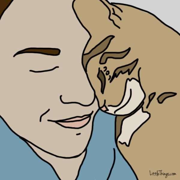 10 comportements de votre chat qui signifient « Je t'aime »