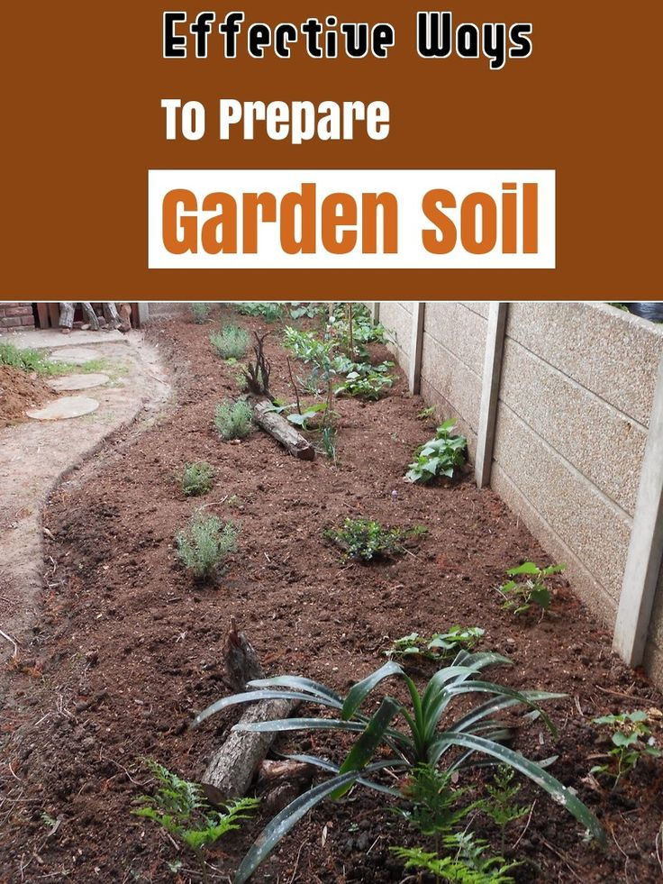 95a1ab77fcdcc37d78a36bc710fe17f4 - How To Prepare Georgia Soil For Gardening