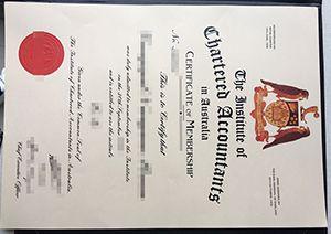 Institute of Chartered Accountants in Australia certificate,