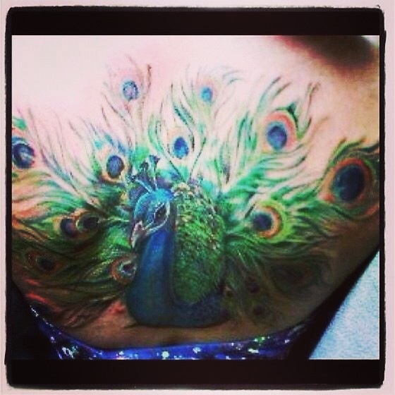 #peacock tattoo