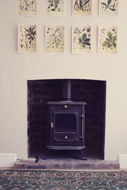 woodburning stove & botanical prints | girl, meets wolf - looks really bare / unfinished