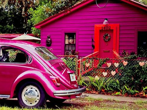fuschia bugRed Doors, Punch Buggy, Purple House, Vw Beetles, Vw Bugs, Pink Cars, Pink House, Hot Pink, Small House