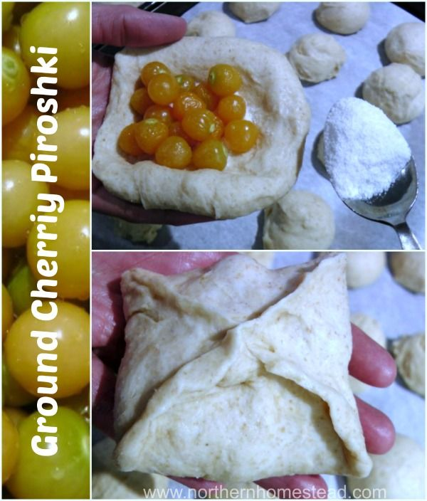 Ground Cherry Piroshki