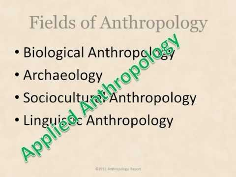 "http://anthropologyreport.com/what-is-anthropology/  Made some updates to the cornerstone ""What is Anthropology"" page. Let me know what to add or subtract!"