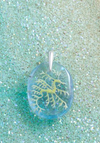 #leafyseadragon 003    #リーフィーシードラゴン 003 #glass #sea