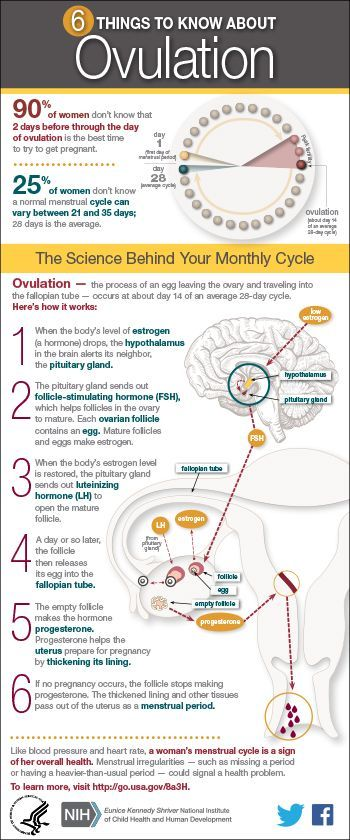 6 Things to Know About #Ovulation: 90% of women don't know that 2 days before through the day of ovulation is the best time to try to get #pregnant. #NICHD