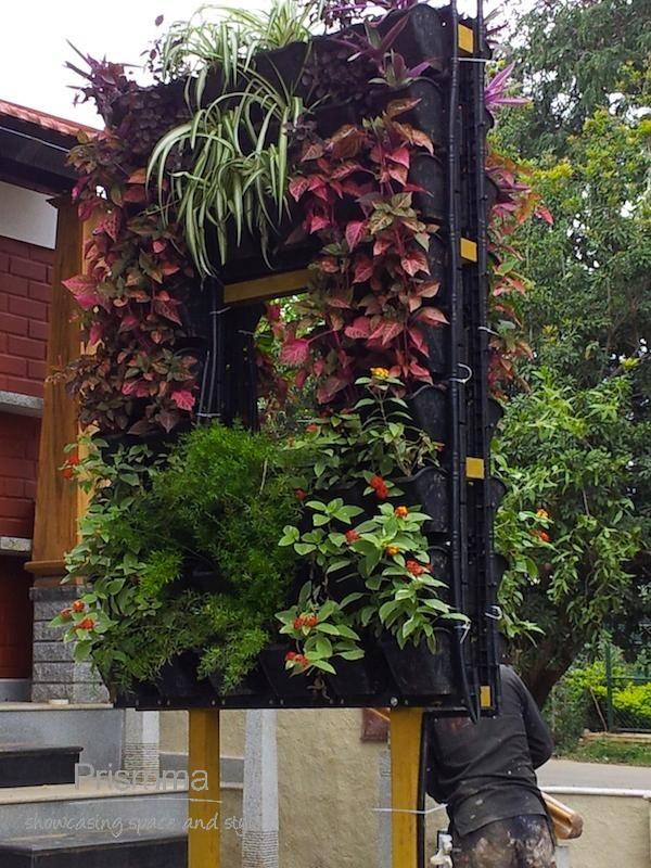 740 best Outdoors Balcony Garden Design Patios Courtyards