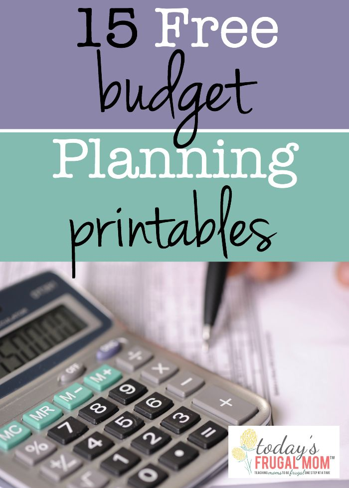 150 best Budget Printables - Free! images on Pinterest Budget - budget forms