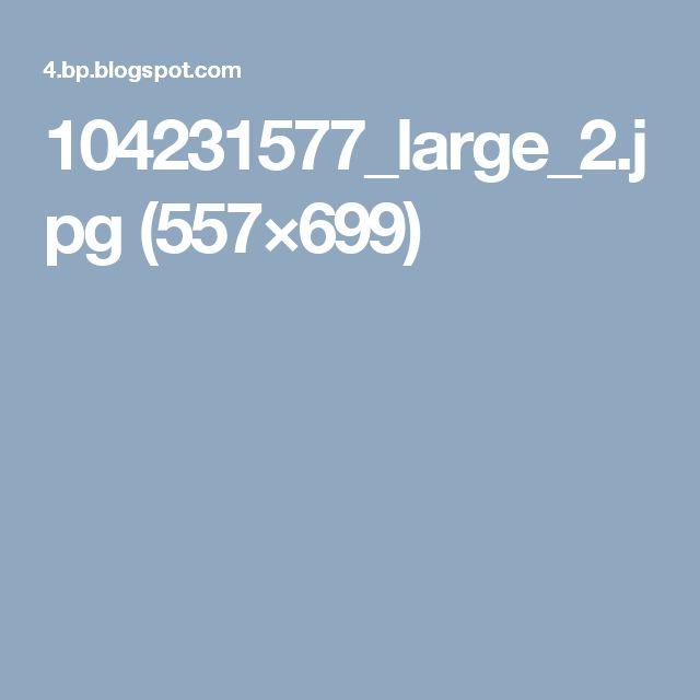 104231577_large_2.jpg (557×699)