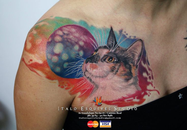 Watercolor cat  By italo esquivel