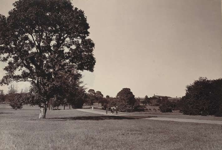The Cubbon Park Bangalore: Cubbon park in the early stage of development.