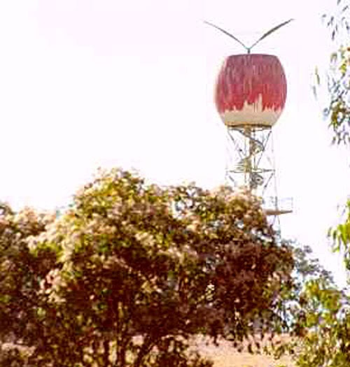 The (other) Big Apple....Western Australia