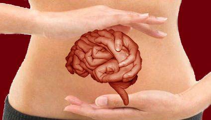 Karnımızın, ikinci beynimiz olduğunu biliyor muydunuz? Yapılan araştırmalar, karın bölgemizdeki organlarımızın fonksiyonları ile beynimizin doğrudan birbiri ile bağlantıda olduğunu gösteriyor. Yaşamın Merkezi: Karnımız kitabının yazarı tıp doktoru Pierre Pallardy, danışanlarının hayatlarını, temel karın solunumu ve ideal beslenme ile 10 gün gibi kısa sürede değiştirebildiğini iddia ediyor. İkinci beynimiz olan karnımızın mesajlarını dinlemek hayati önem taşıyor.