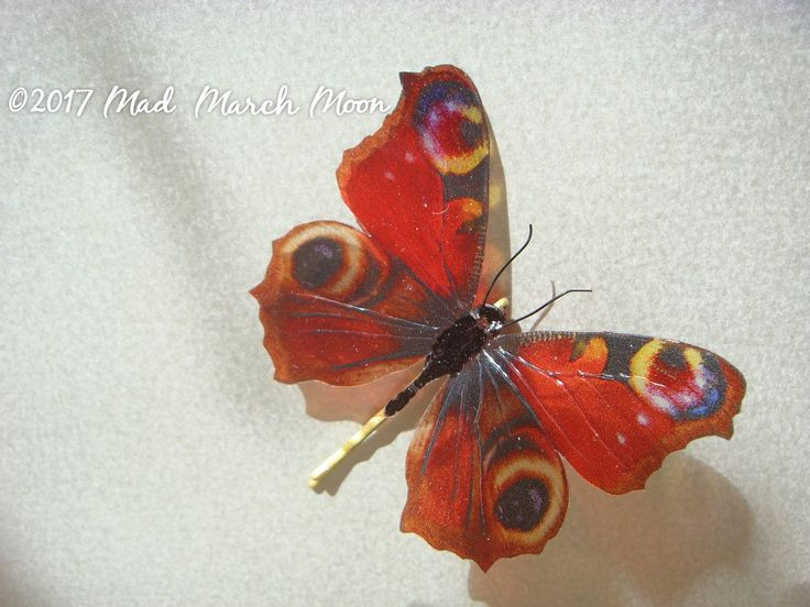 Peacock Butterfly hair pin, transparent rich colour bobby pin, handmade hair accessory single hair grip by MadMarchMoon on Etsy