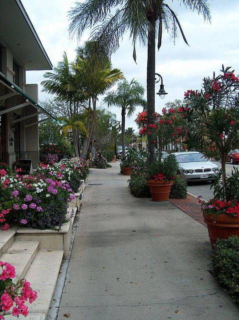 Sidewalk in Old Naples Florida | Flickr - Photo Sharing!