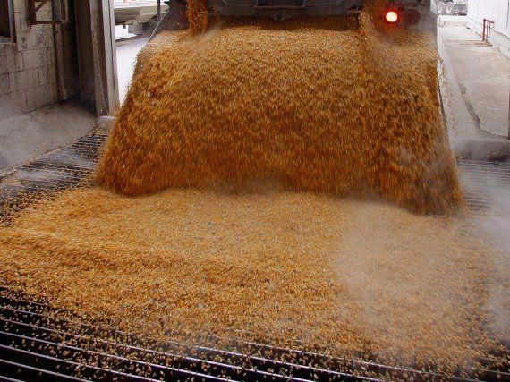 5 Razones por las que el jarabe de maíz de alta fructosa te va a matar