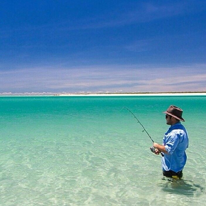 59 best images about sites to see in big pine key florida for Florida fishing lodges