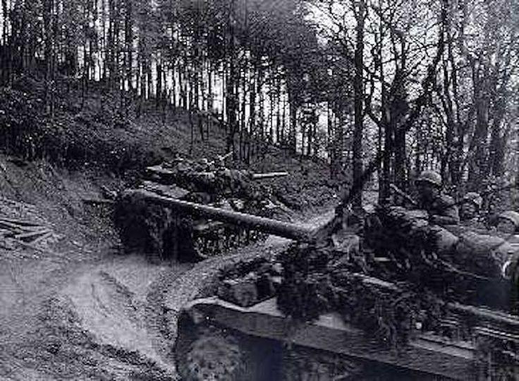 Deux destroyers de réservoir M-10 avancer sur un étroit sentier à travers la forêt de Hürtgen Two M-10 tank destroyers advance along a narrow trail through the Hürtgen Forest