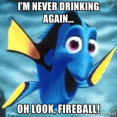 I'm never drinking again... Oh look, Fireball! - Dory