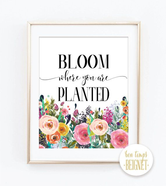 "Bloom where you are planted. Corinthians - Bible Verse - Bible Quote - PRINTABLE ART - 8x10"" - Instant Download - Inspirational Quote $5 via Bon Temps Beignet on Etsy"