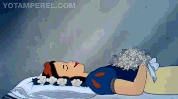 Snow White Going Down.gif