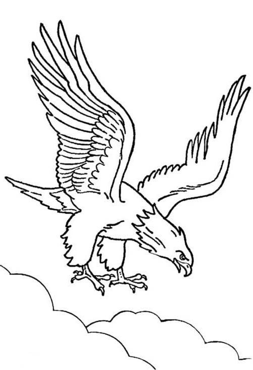 20 Cute Eagle Coloring Pages For Your Little Ones ... - photo#7