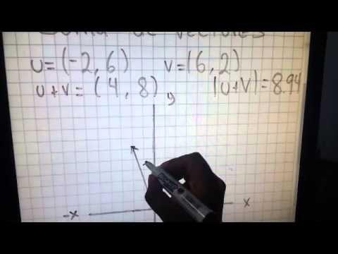 UD 2 Suma, Resta de vectores, Magnitud Vectorial y Representación Grafica
