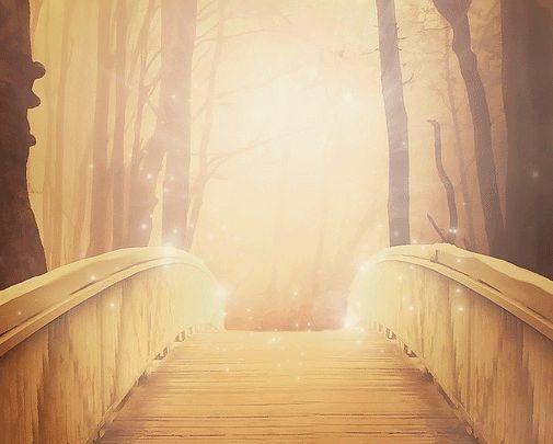 """Jesus Christus sagt:  """"Ich bin der Weg, die Wahrheit und das Leben."""" - Jesus Cristus -"""