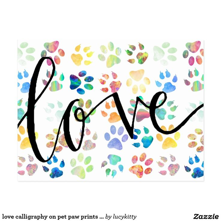 love calligraphy on pet paw prints pattern postcard