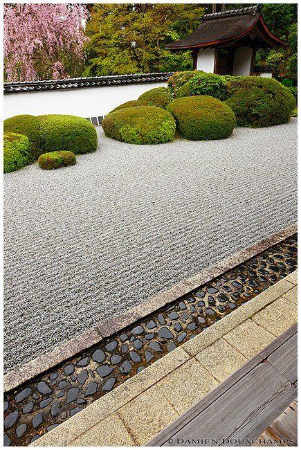 https://flic.kr/p/8zZCBu   Shoden-ji 正伝寺, Kyoto 京都, Japan  