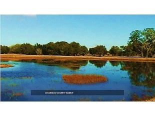 Pinned on www.realtor.com. Diane Alexander. Reduced $500K. 711 ac Colorado County Ranch. Ducks Unlimited Watershed. Best Hunting. Owned MINERALS CONVEY. US 90A frontage. 17,739 SF improvements. 59 MI to Katy, 75 MI to Bastrop, 88 MI to Houston. http://www.swpre.com/listing/colorado-county-ranch/