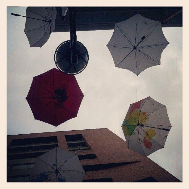 Umbrellas fly